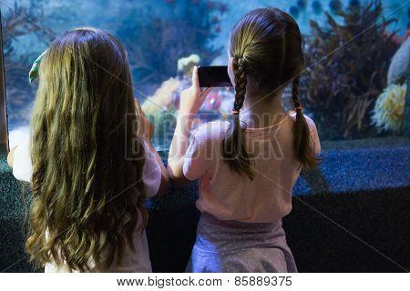Cute girls looking at fish tank at the aquarium