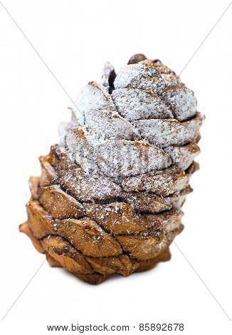 Christmas pine cone on a white background