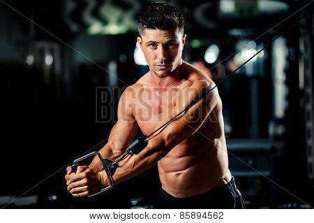 Handsome Man Workout In Gym