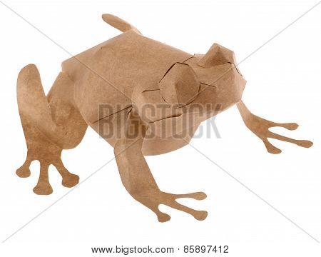 Paper Tree Frog