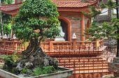 stock photo of trans  - Buddhist Tran Quoc Pagoda in Hanoi vietnam - JPG