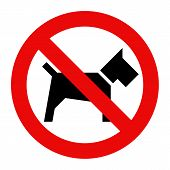 image of no entry  - No dogs sign isolated on white background - JPG