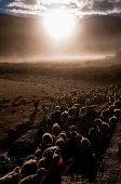 stock photo of nomads  - Sunset in Puga - JPG