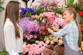 image of flower shop  - Only the freshest flowers - JPG