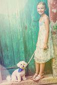 foto of maltese-cross  - Portrait of fashion girl with maltese dog - JPG