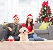 picture of dog christmas  - Young couple celebrating Christmas with their dog at home shot with tilt and shift lens - JPG