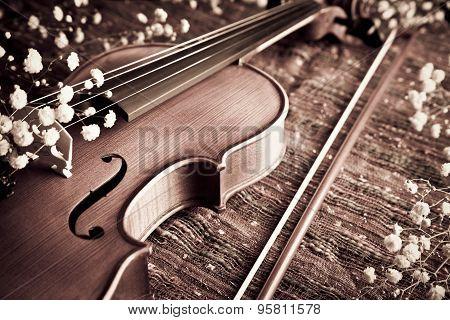 Violin And Bow With Gypsophelia On Woven Cloth