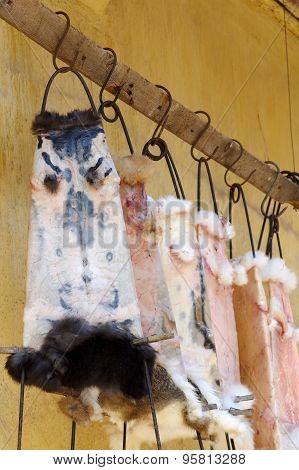 rabbit fur skin drying for sale