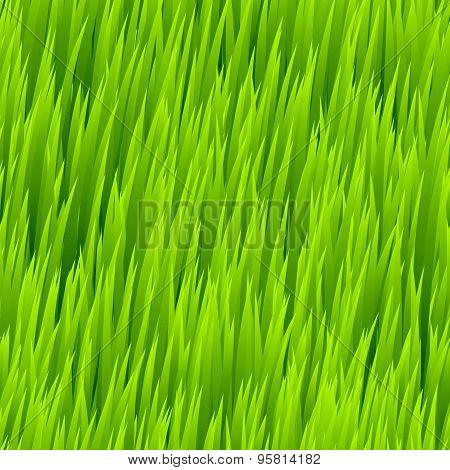 Green grass seamless pattern. Vector illustration