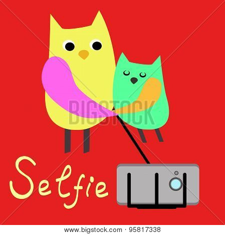 Pets selfie. Funny animals on a colored background. Vector. Owls . Flat.