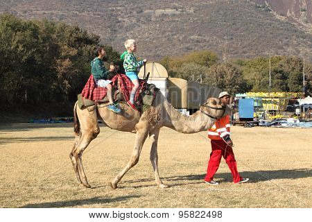 Two Boys Riding On Camel Back At Festival