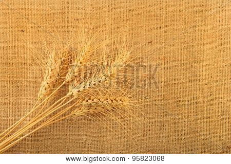 Jute Canvas With Nine Wheat Ears