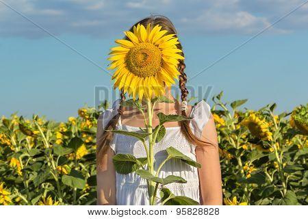 Girl Hiding Behind Flower Sunflower