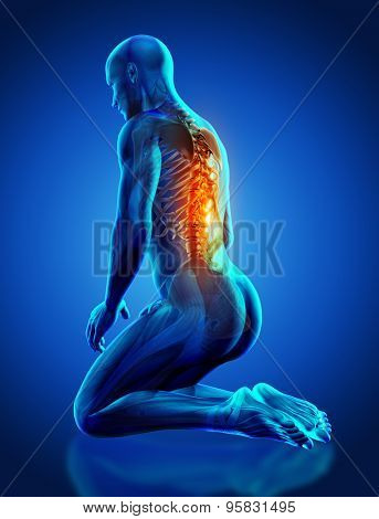3D render of a male medical figure with spine highlighted in kneeling position