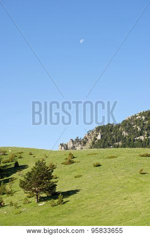 Landscape in Pyrenees, Aragues Valley, Aragon, Huesca, Spain.