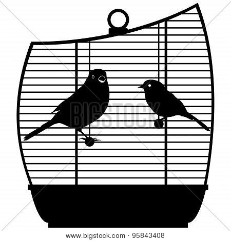 Cage With Birds-1