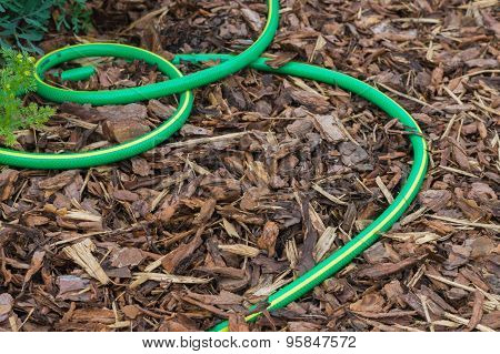Garden Hose On Ground Covered By Natural Bark, Gardening Background