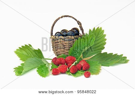 Wild Strawberries And Cherries In A Small Basket