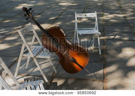 cello  left out on the street before playing