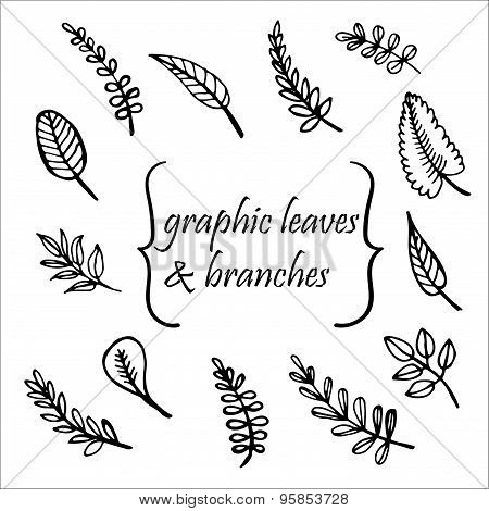 tree leaves hand drawn vector illustration