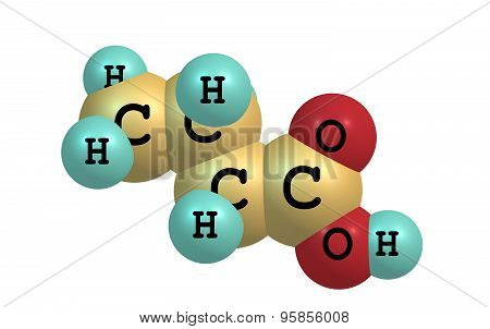 Butyric acid molecule isolated on white