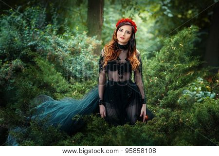 Beautiful Girl Is In The Fairy Forest.
