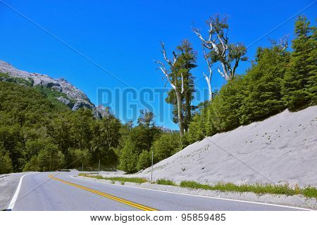 Roadside covered with white volcanic ash remaining after the eruption Pueue. Road in the mountains of Patagonia