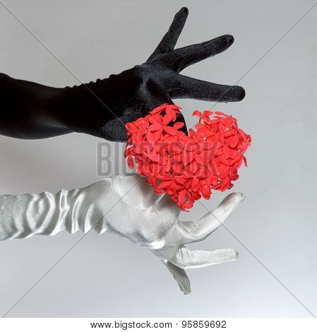 Black And White Elegant Women's Gloves Holding Heart Shaped Flowers On White Background