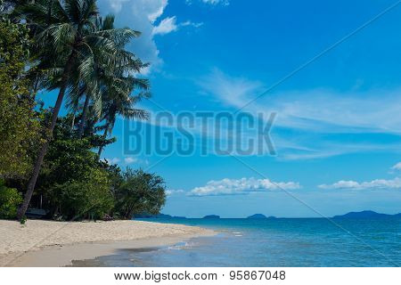 beach on a tropical island with palm trees in Thailand