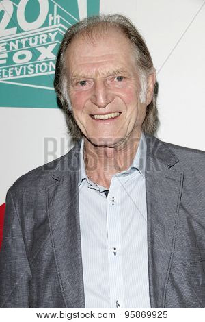 SAN DIEGO - JUL 10:  David Bradley at the 20th Century Fox Party Comic-Con Party at the Andaz Hotel on July 10, 2015 in San Diego, CA
