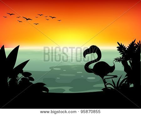 Lake scene with silhouette bird and plants