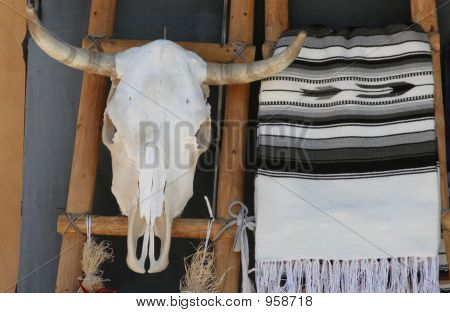 Cow  Skull And Blanket