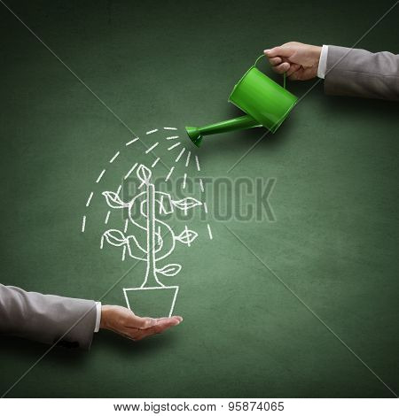 Watering can and money tree drawn on a blackboard concept for business investment, savings and making money