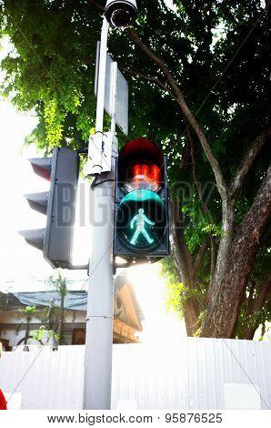 Traffic light sign pedestrian crossing