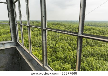 Fire Watch Tower View