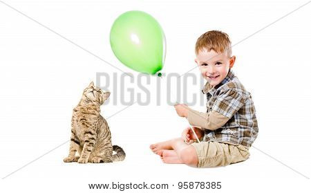 Cheerful child and cat Scottish Straight