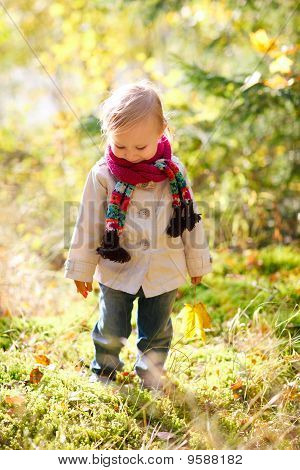 Toddler Girl Walking At Autumn Forest
