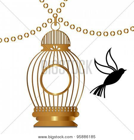 Golden bird cage bird