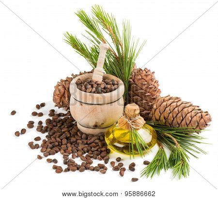 Oil, Nuts And Cones Of Cedar Tree