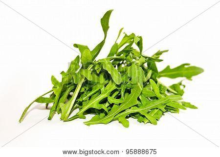 Salad Rocket. Rucola. Eruca Sativa.