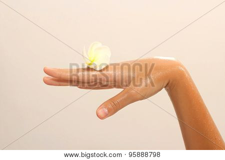Close-up Of Female Hand In Oil Holding Flower On Beige Background