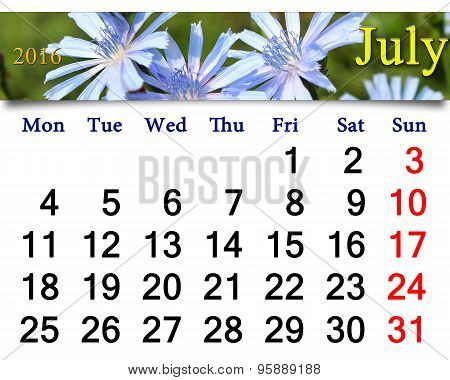 Calendar For July 2016 Year With Flowers Of Cichorium