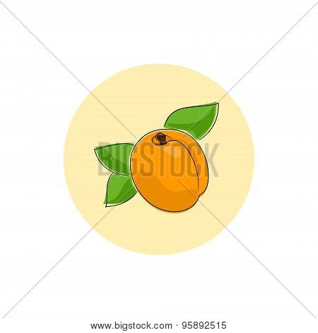 Icon Colorful Apricot