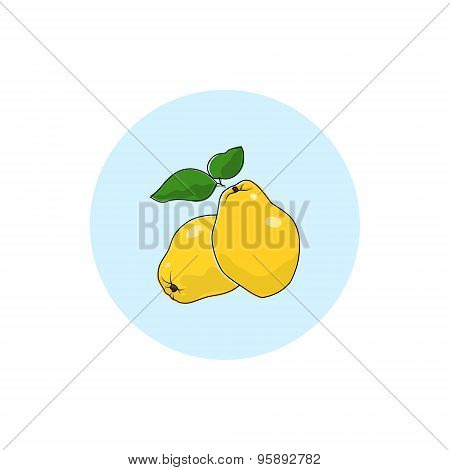 Icon Colorful Quince