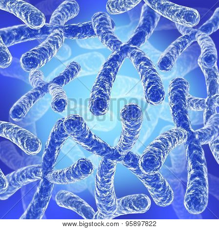 Chromosome background