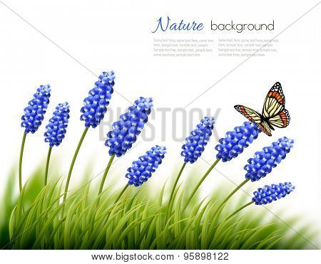 Beautiful lavender background with a butterfly. Vector.