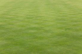 foto of crown green bowls  - Short mown grass on a bowling green field - JPG