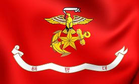 picture of corps  - Republic of Korea Marine Corps Flag - JPG
