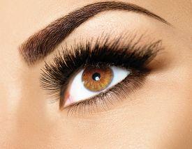 stock photo of eyebrows  - Brown Eye Makeup - JPG