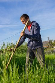 picture of scythe  - farmer mowing tall grass scythe manual - JPG